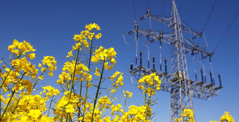 Bioenergie-2